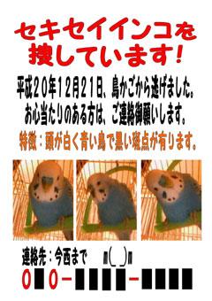 2009.01.06今年、最初の朗報!.jpg